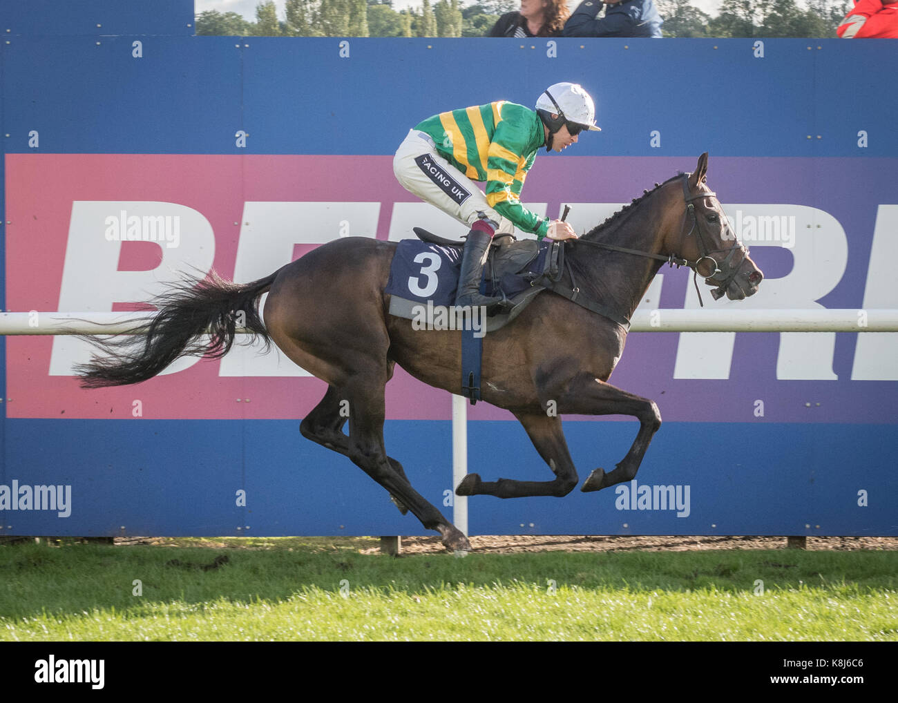 Racehorse crosses the winning line at Uttoxeter Racecourse - Stock Image