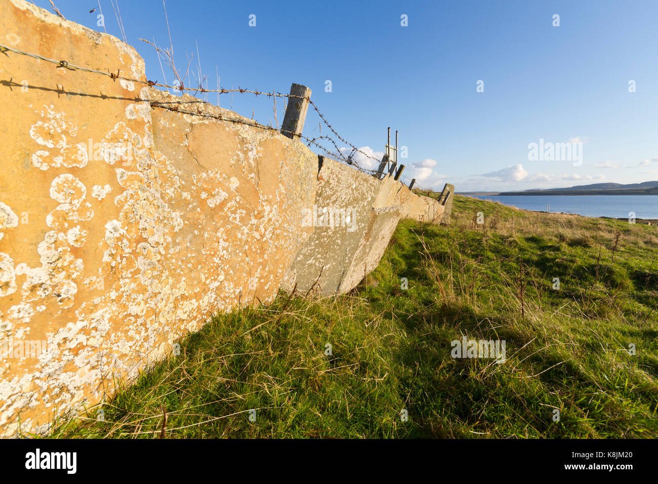 Caithness flagstone wall - Stock Image
