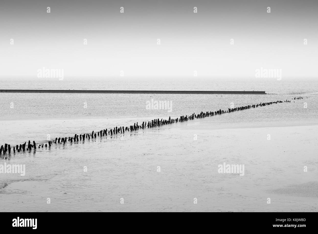 Low tide at the north sea, East frisia, Lower saxony, Germany, Europe - Stock Image