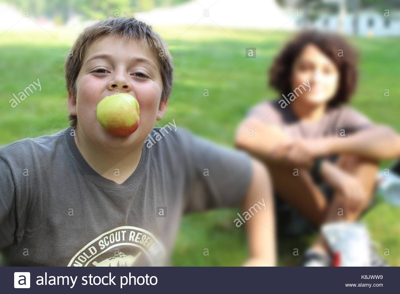 Boy Scout Camp - Stock Image