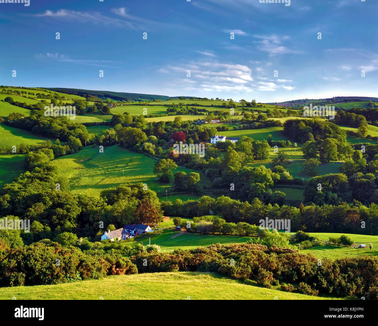 A late summer view of the hilly landscape of Clwyd, North Wales. - Stock Image