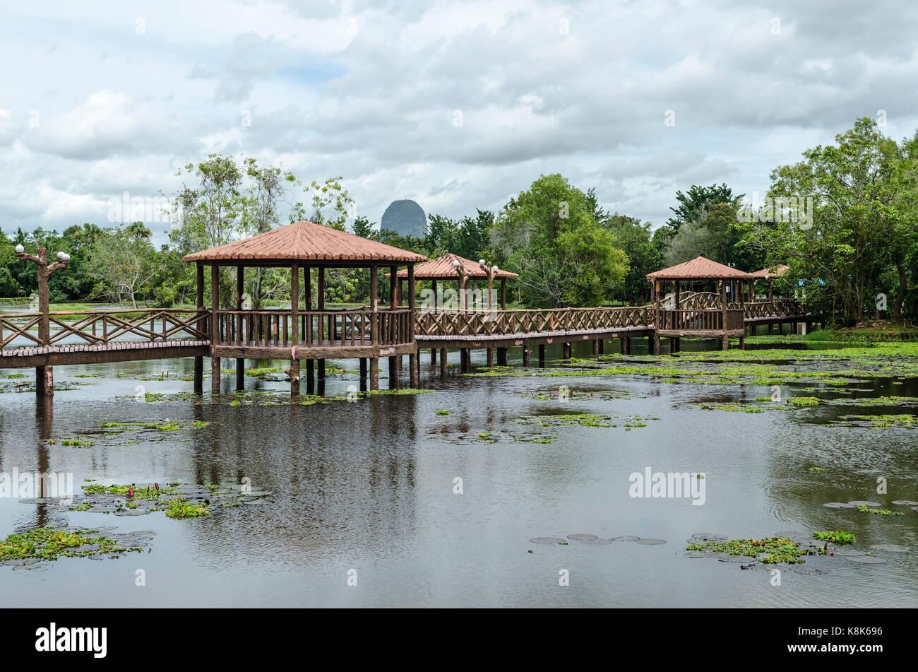 Taman Rekreasi Tasik Melati, Perlis, Malaysia - Tasik Melati is a wetland with its wild plant Stock Photo