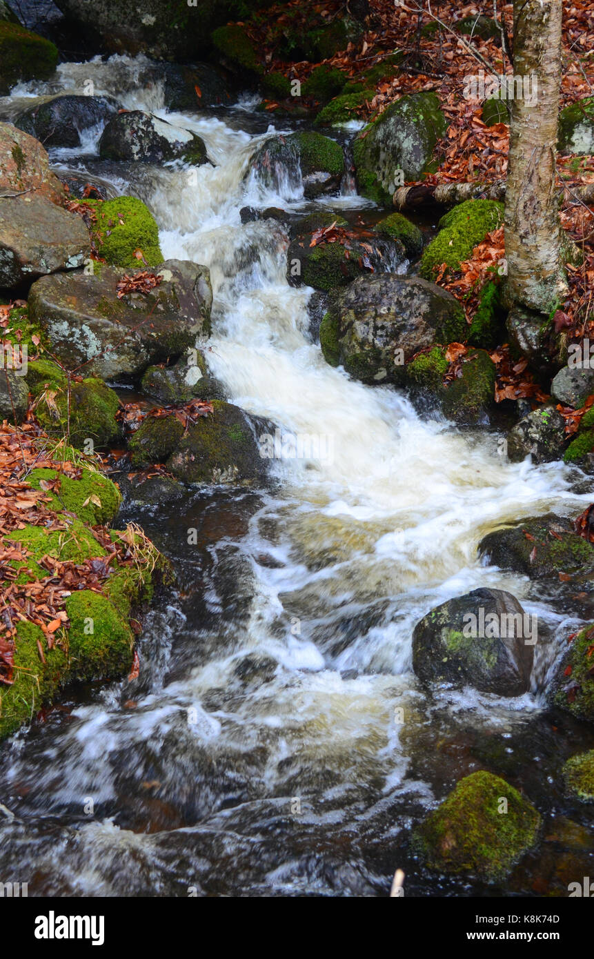 Babbling Brook High Resolution Stock Photography and ...