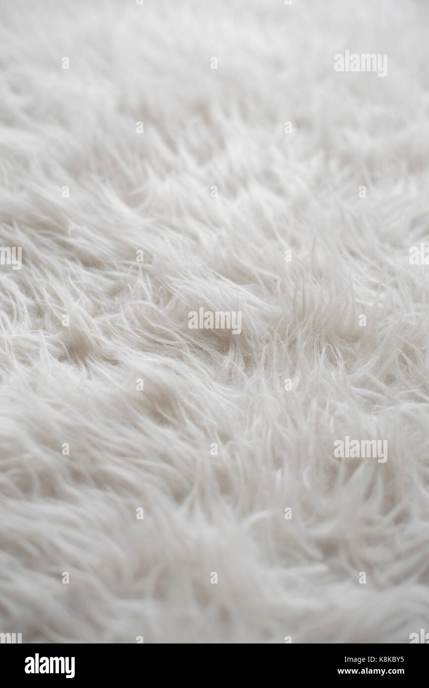 Photo of a Sheepskin wool rug closeup for background (selective focus) - Stock Image