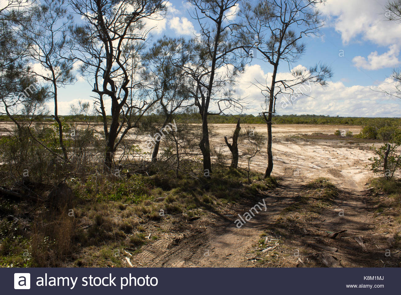 A bush track leading onto a salt pan where vehicles often dive over small plants and cause environmental damage. - Stock Image