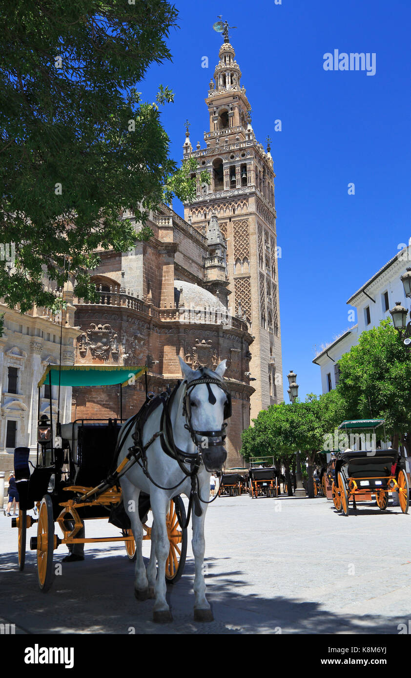 Seville Cathedral and carriages, Spain - Stock Image