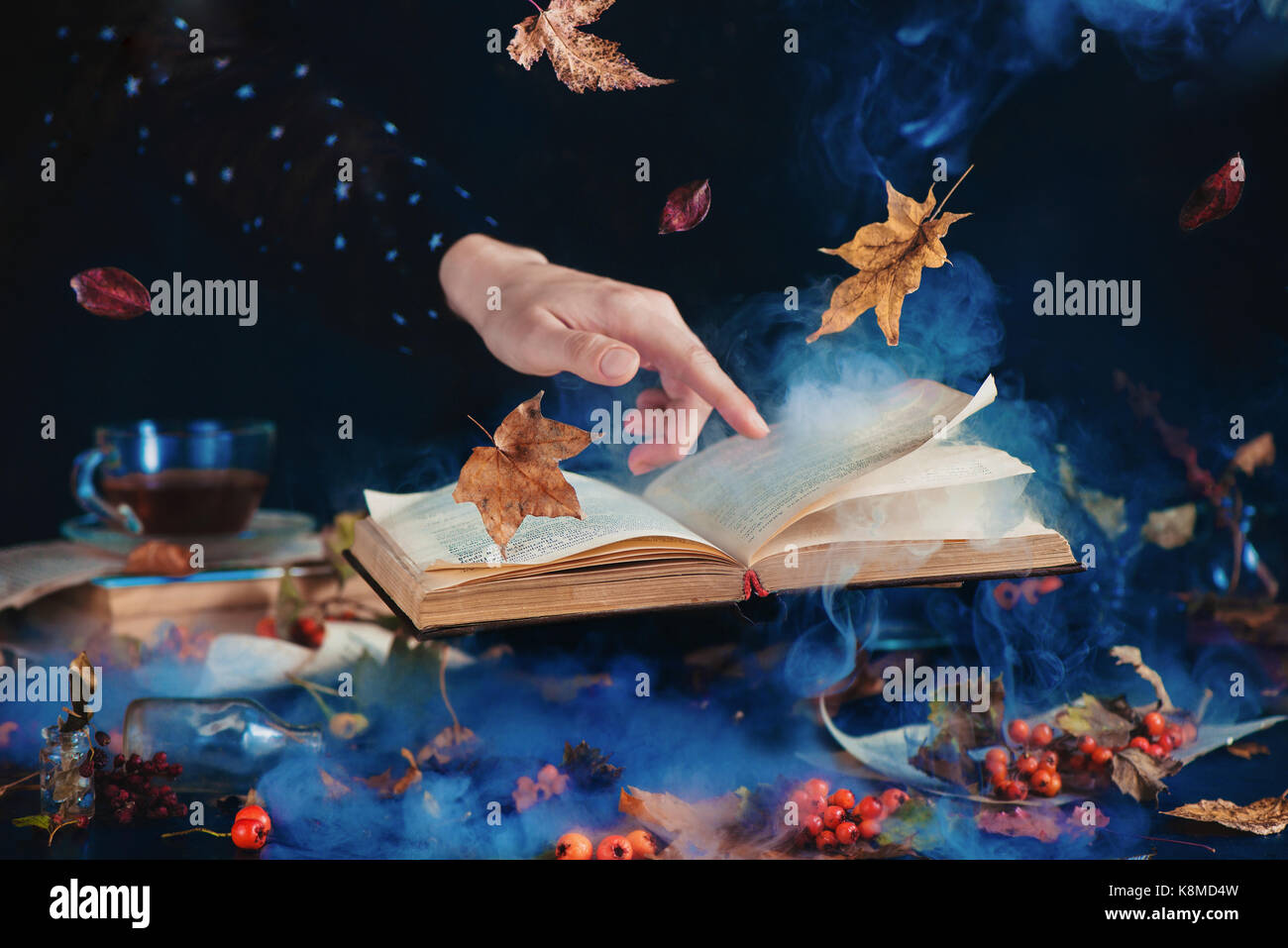 Still life with levitating book of spells, autumn leaves, red berries, jars and bottles on a dark background with - Stock Image