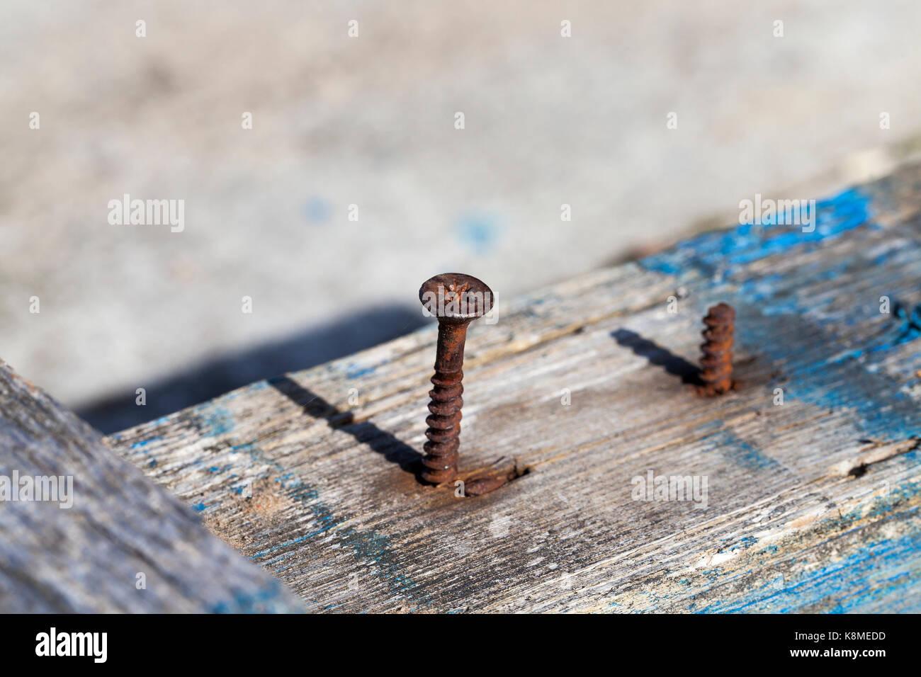 Rusty Hardware Nails