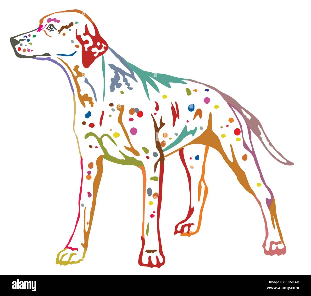 Colorful contour decorative portrait of standing in profile dog Dalmatian, vector isolated illustration on white - Stock Vector