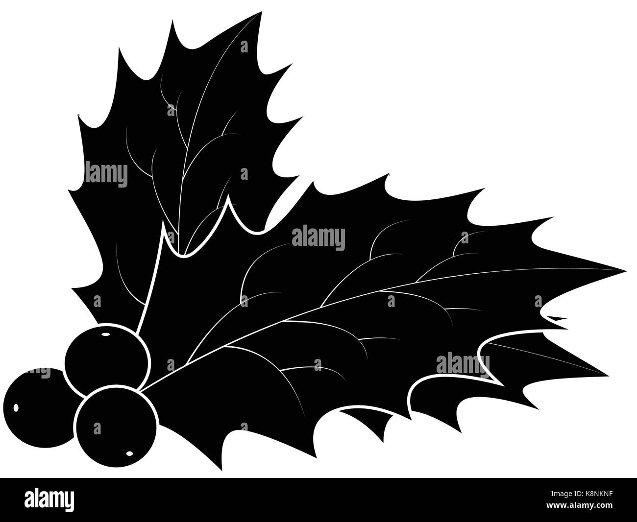 Christmas Holly Silhouette.Holly Berry Silhouette Christmas Leaves And Fruits Icon