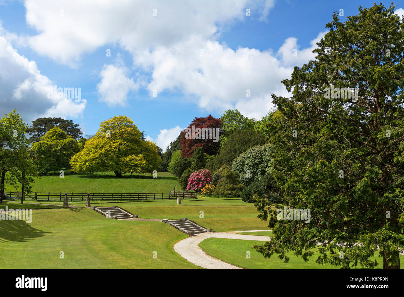 a classic country garden landscape at pencarrow house near bodmin in cornwall, england, uk. - Stock Image