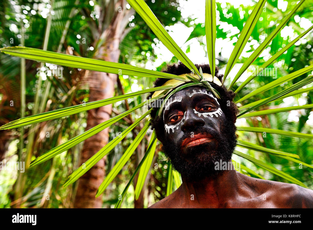 Korafe man with face painting and headdress made of leaves, McLaren-Harbour, Tufi, Papua New Guinea, Oceania - Stock Image