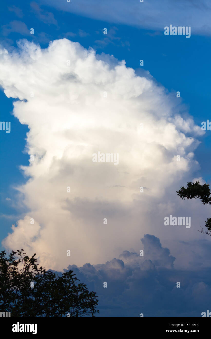 towering cloud reaching up towards the sky as the sun brightens it before it sets - Stock Image