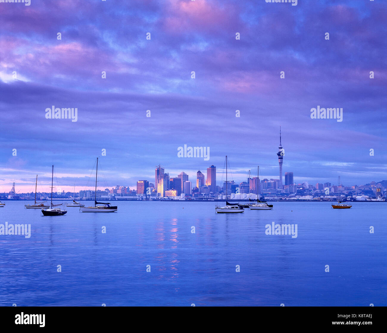 New Zealand. Auckland. City skyline from across the water at dawn. - Stock Image