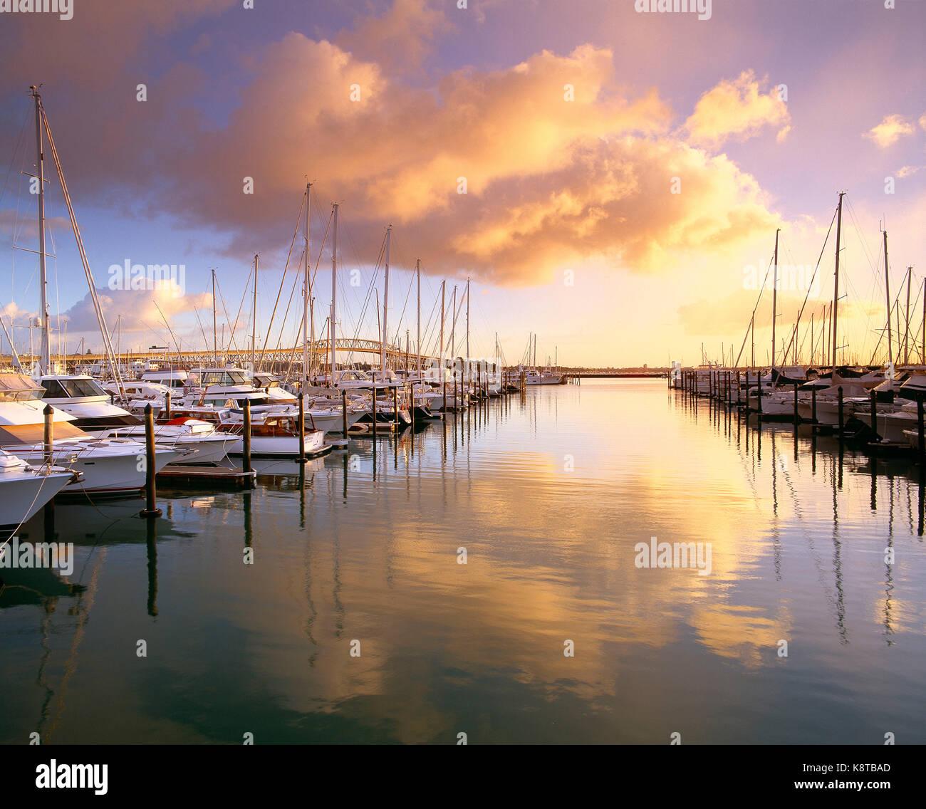 New Zealand. Auckland. Yachts in marina at sunrise. - Stock Image