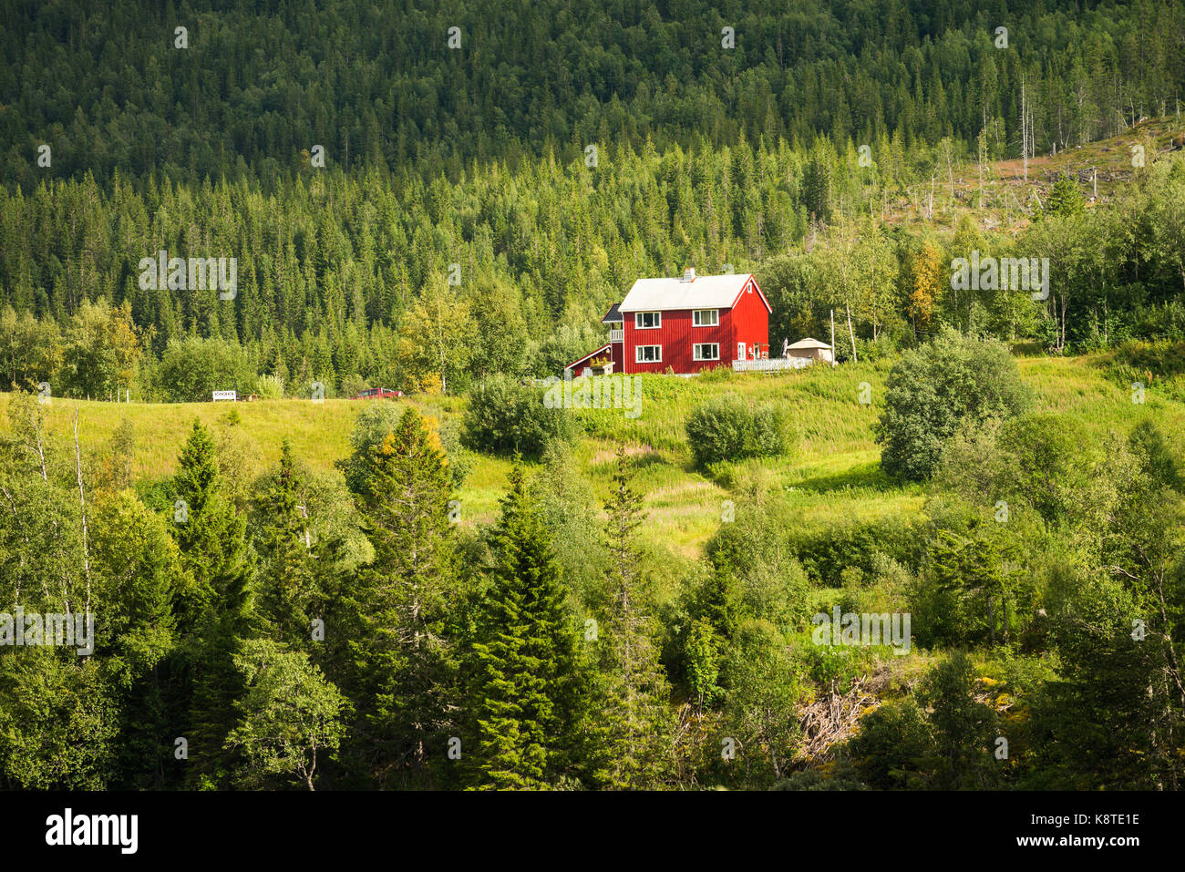 Rural Red House On The Top Of The Hill Over River Norway Stock Photo Alamy