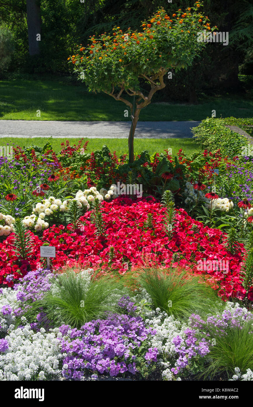 Garden estate on Mainau Island, Lake Constance (Bodensee), southern Germany - Stock Image
