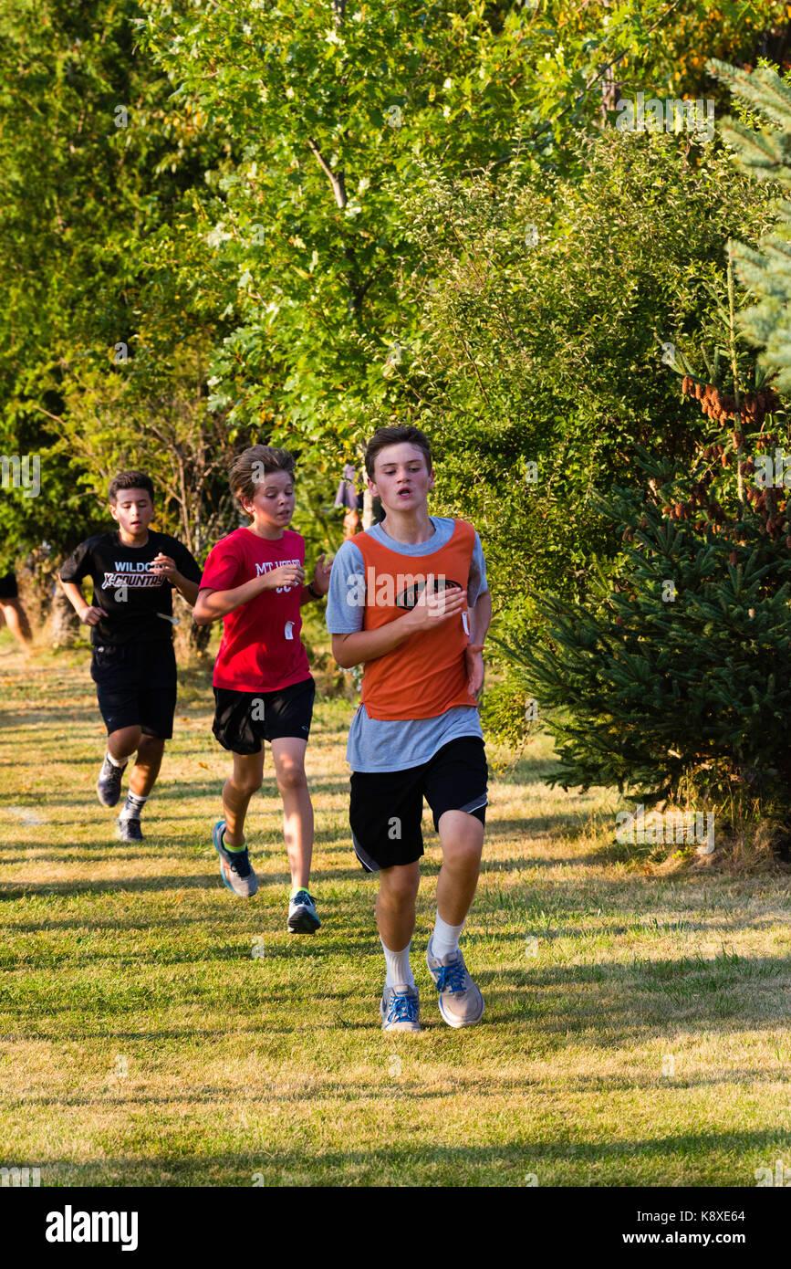 High School Cross Country Race Education High School Sports Stock