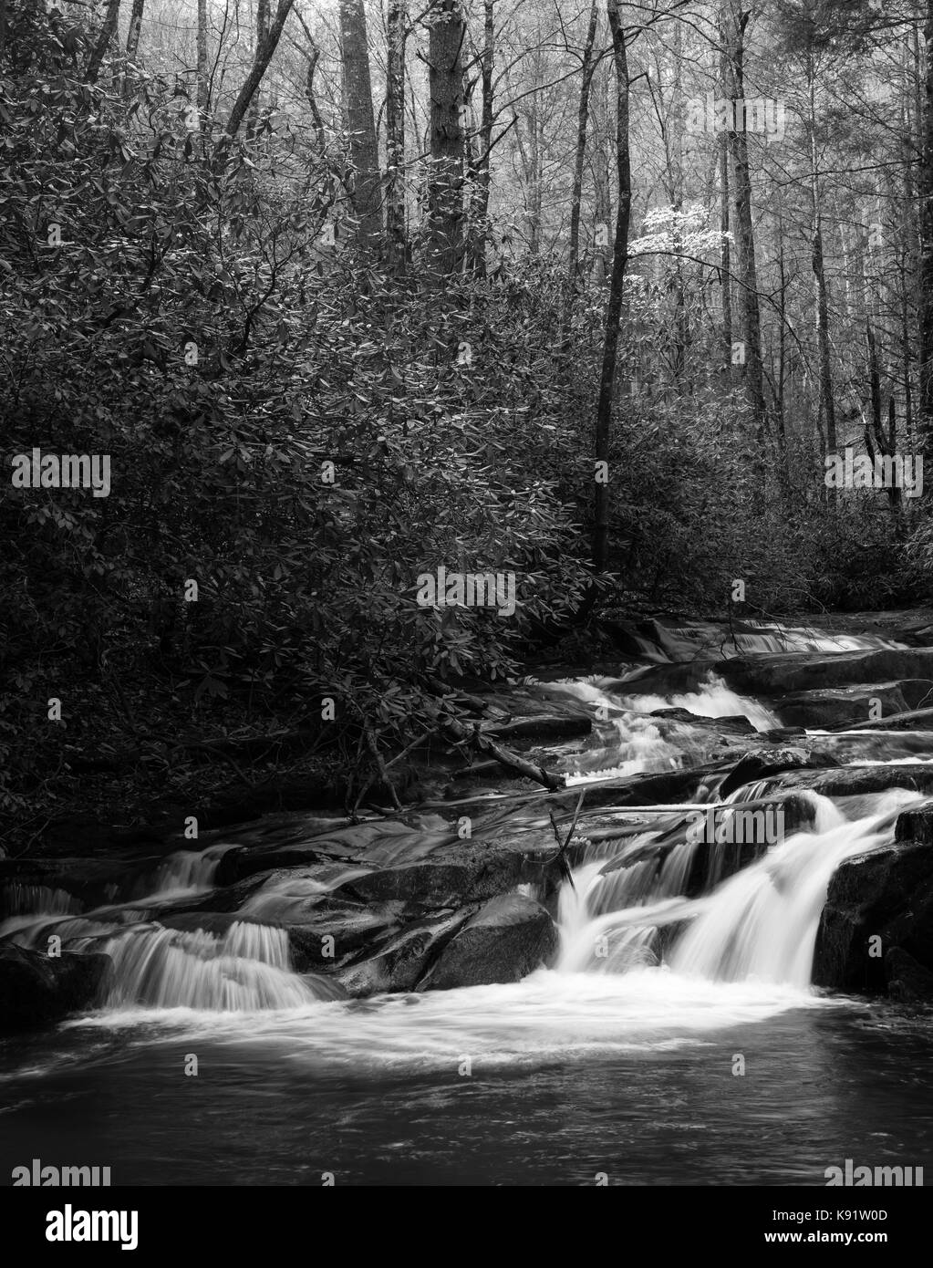 Wildcat Creek is located in Rabun County in north Georgia.  It flows generally west to east until it empties in - Stock Image