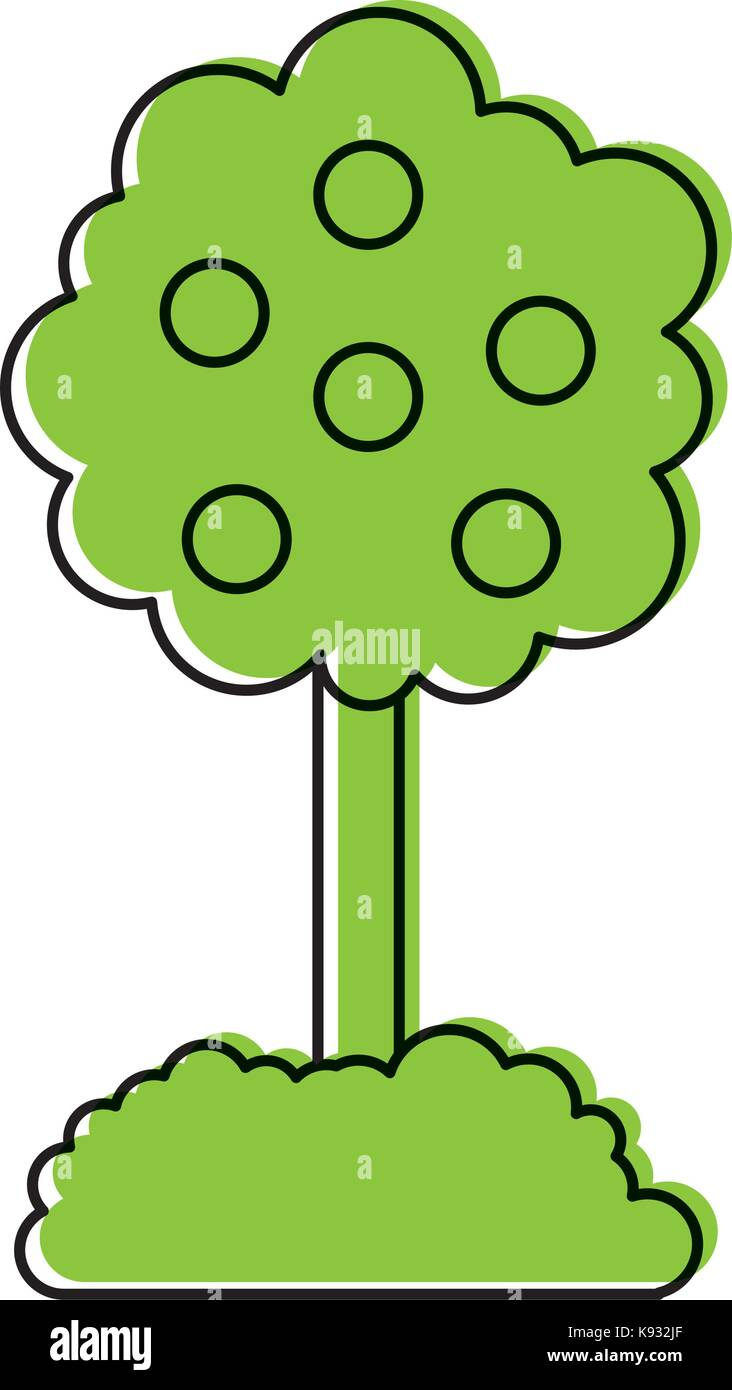 tree with fruit natural forest environment concept - Stock Vector