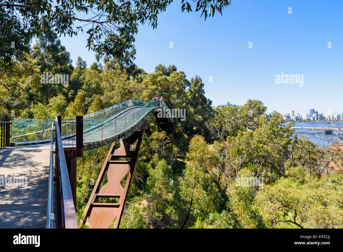 People on the Kings Park Lotterywest Federation Walkway Bridge with views over towards Perth city, Western Australia, - Stock Image