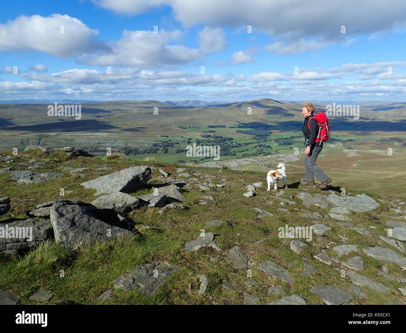 A woman and her dog walking on Ingleborough, one of the Yorkshire Three Peaks, Yorkshire Dales National Park, Yorkshire, - Stock Image