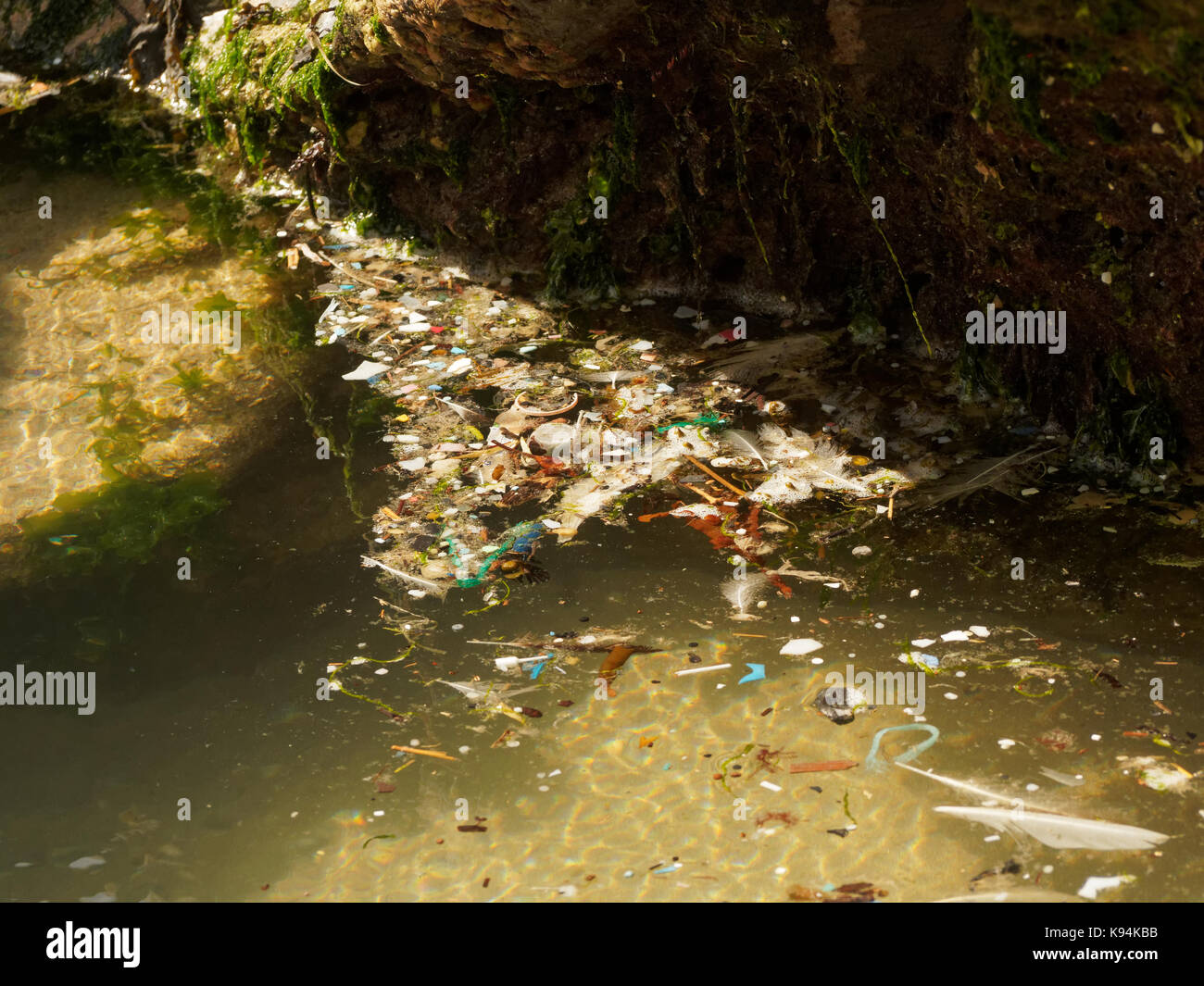 Beaches and rock pools polluted with plastic micro waste washed in on the tide. 21st, September, 2017  Robert Taylor/Alamy - Stock Image