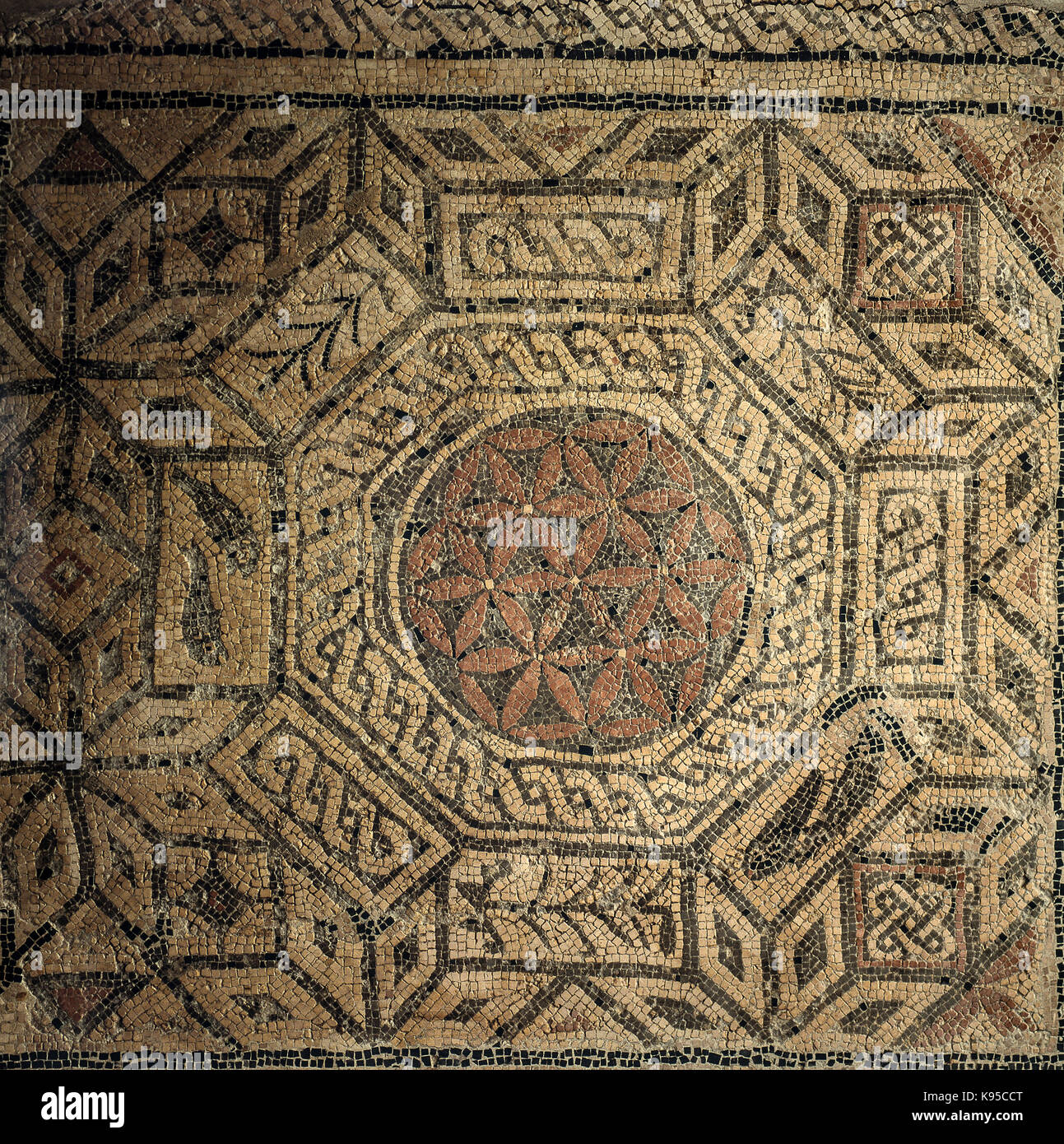 Italy Marche San Severino Marche Archaeological Museum - polychrome mosaic from Pieve  II century a.c. - Stock Image