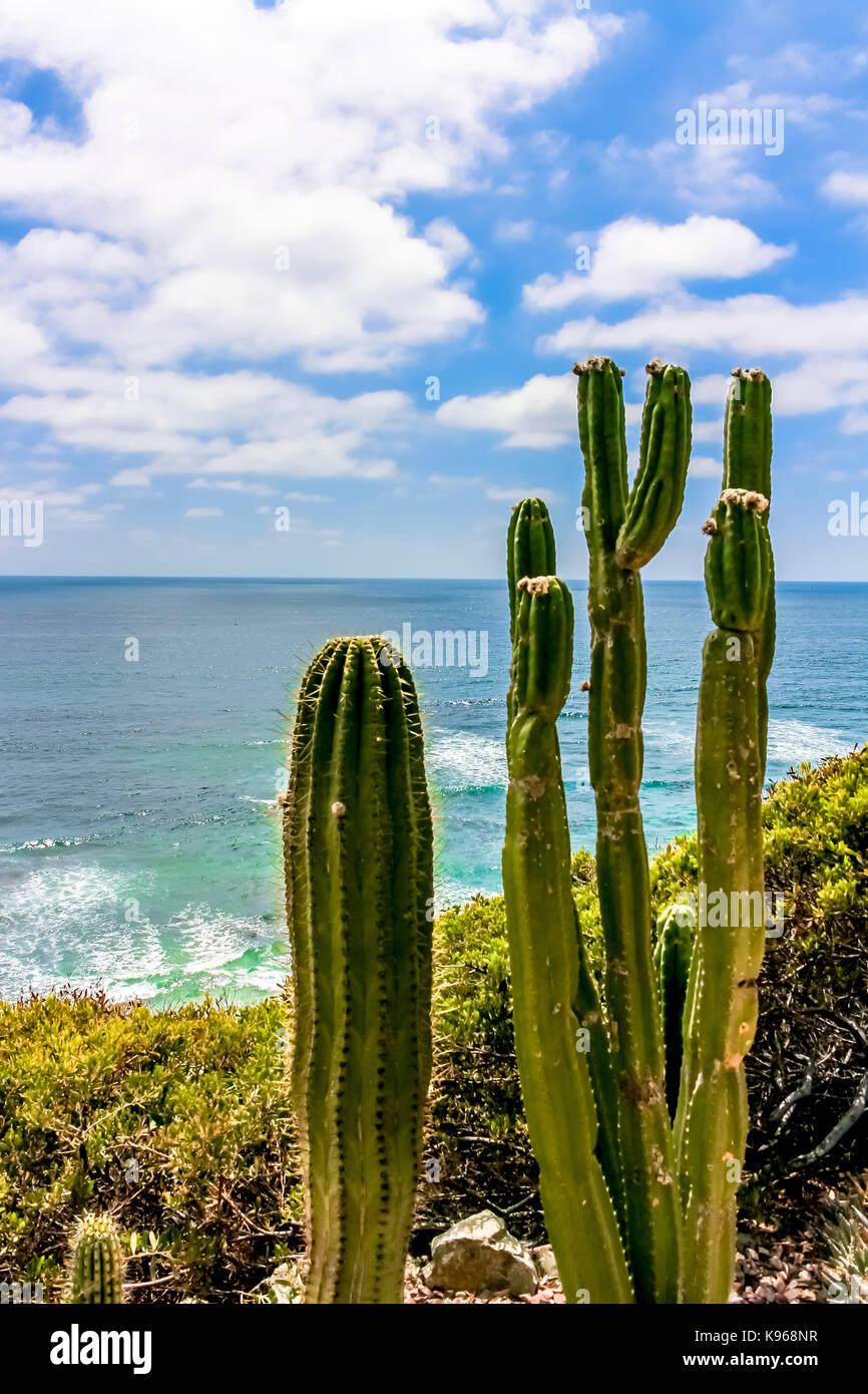 SAN DIEGO   JULY 16, 2016   A View Of The Pacific Ocean, Nearby