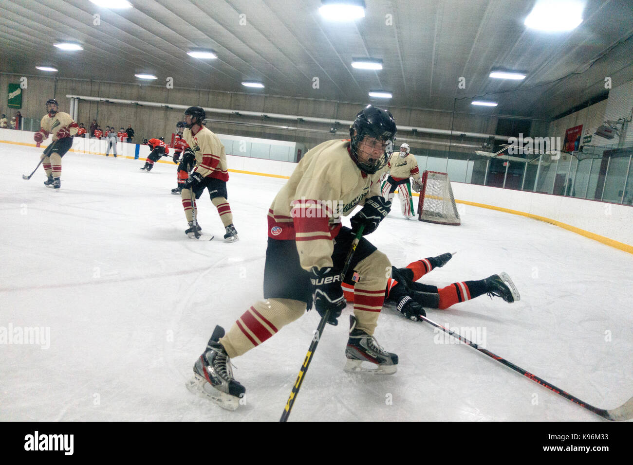 Intense game of hockey played by high school teen boys. St Paul Minnesota MN USA - Stock Image