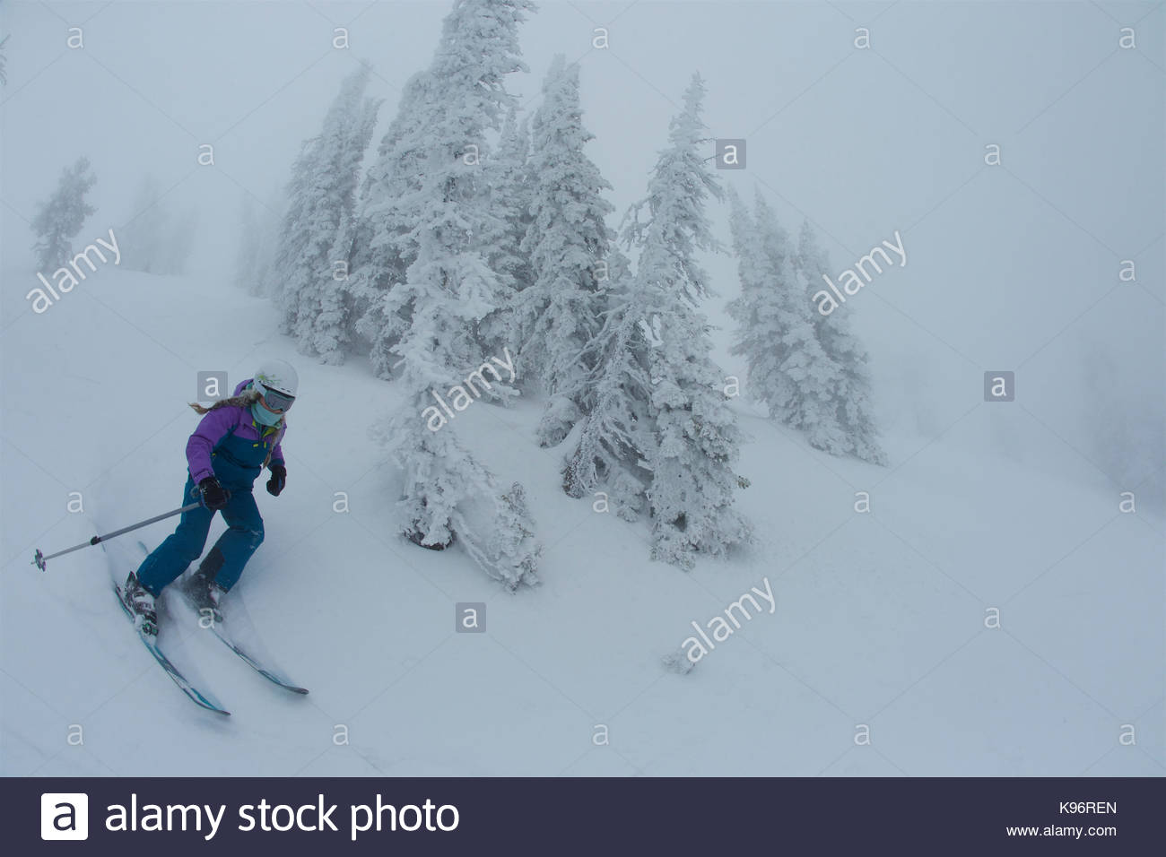 A teen girl skiing in foggy, whiteout conditions near rime covered conifer trees. - Stock Image