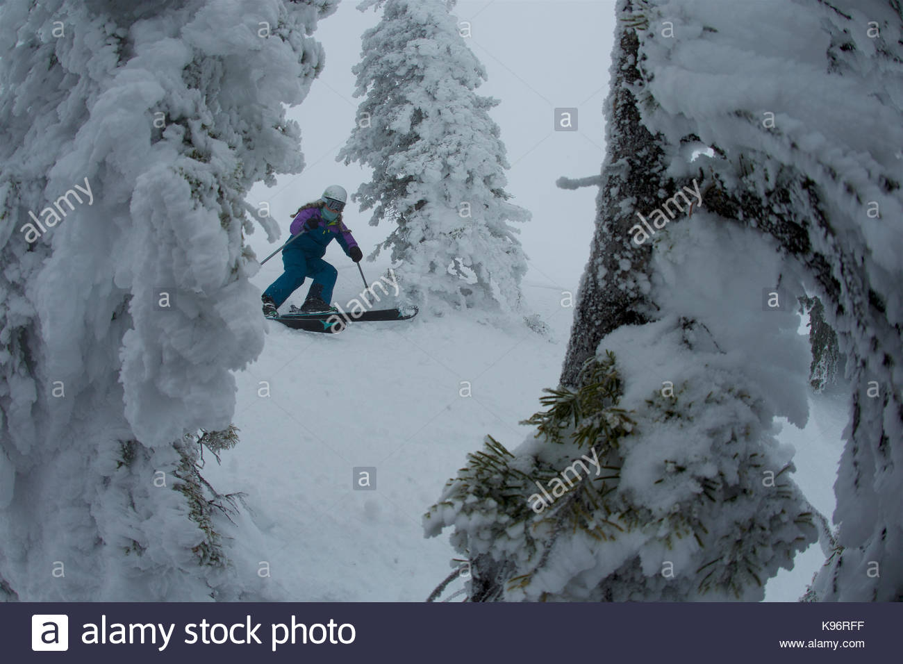 A teen girl skiing through rime covered conifer trees in foggy, whiteout conditions. - Stock Image