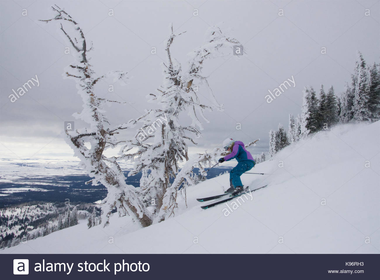 A teen girl downhill skiing near rime covered trees on a cloudy day. - Stock Image