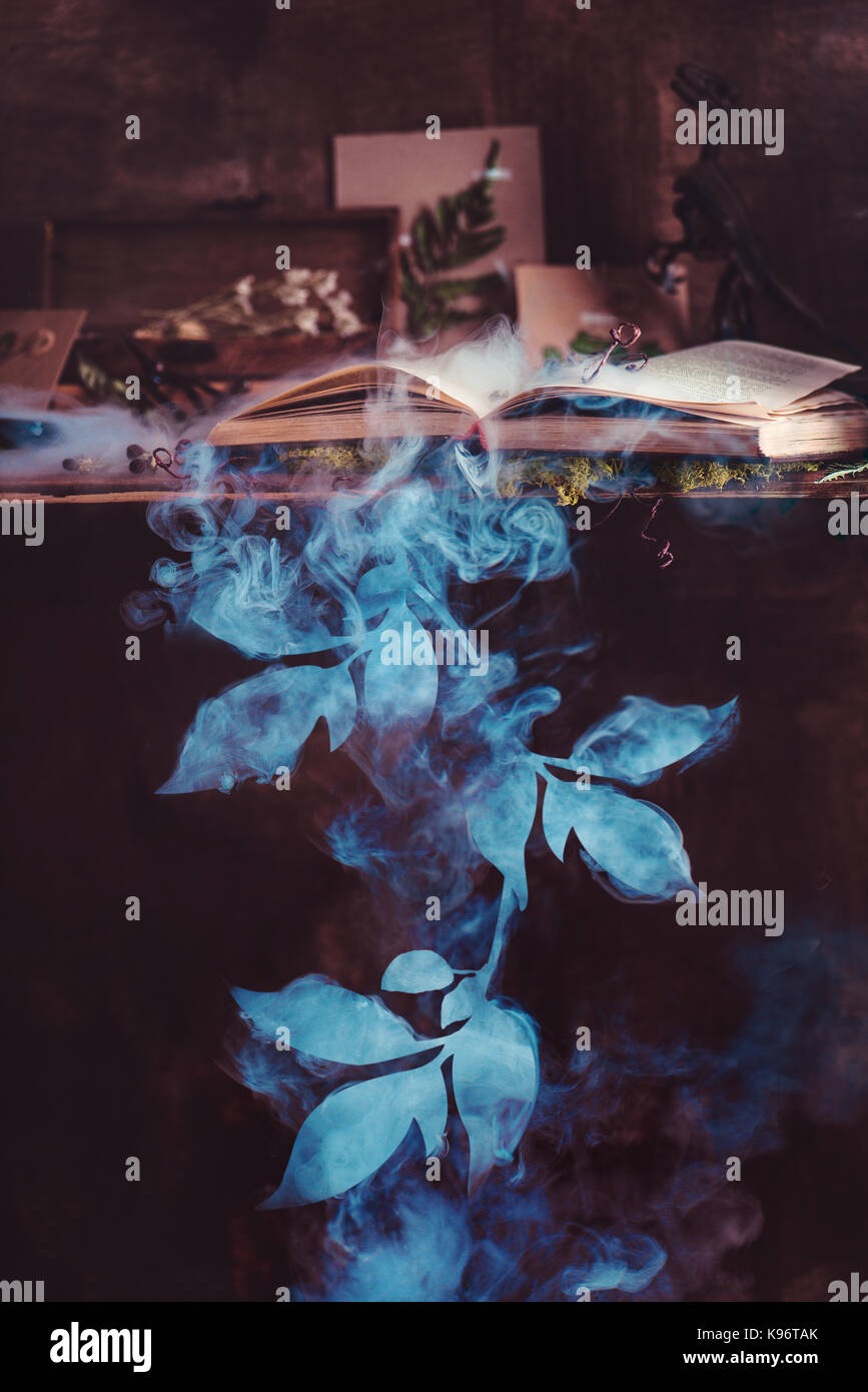 Bookshelf with an open book, dried plants, botanist tools and a smoking silhouette of a tree branch. Dark still - Stock Image