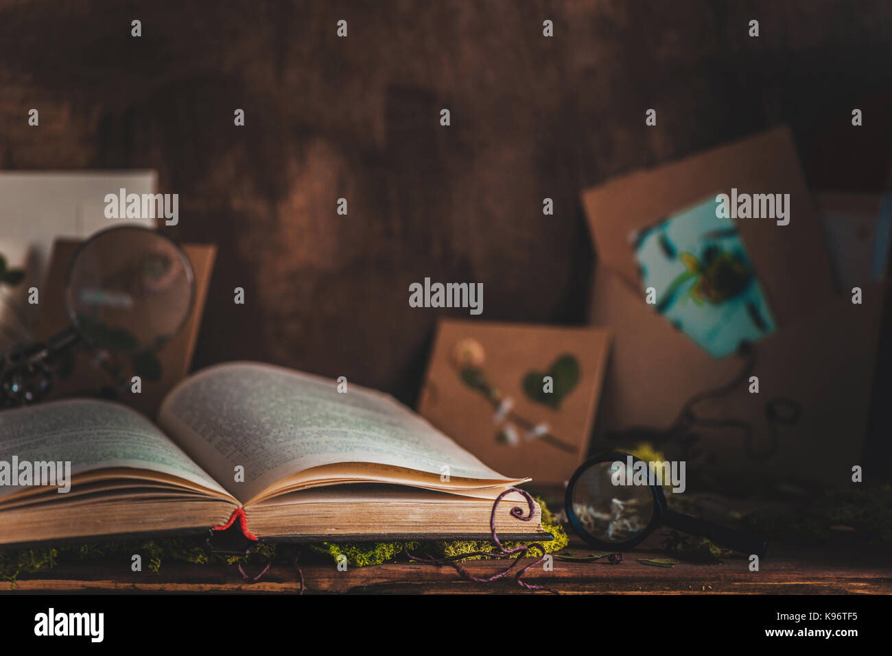 Warm still life with an open book, scissors, dried plants, moss and craft paper envelopes - Stock Image