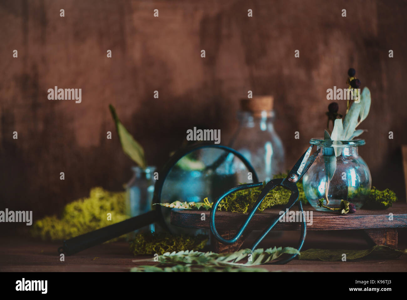 Warm still life with glass jars, magnifying glass, scissors, dried plants, moss and craft paper envelopes - Stock Image