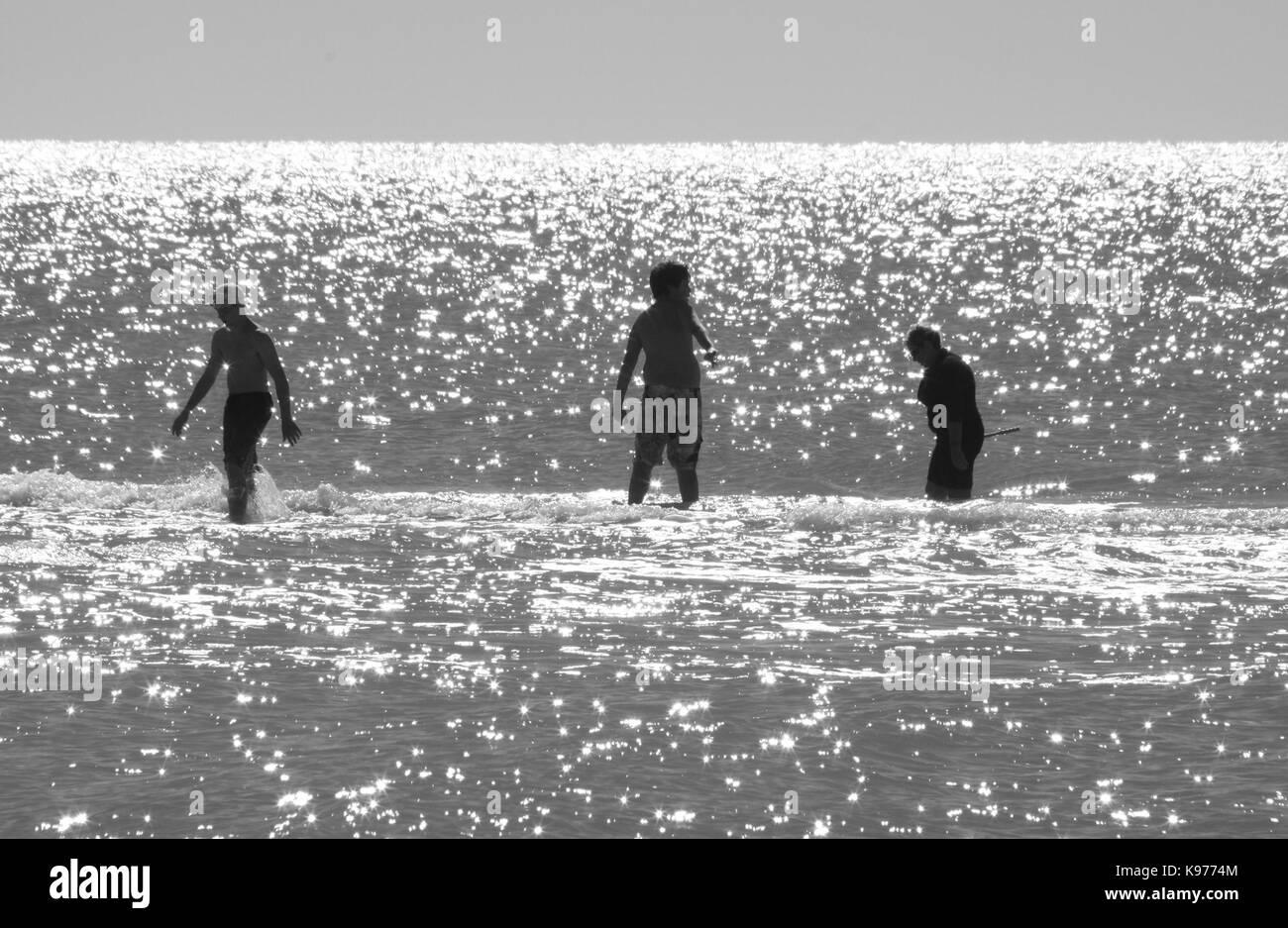 Three bathers check the shallow glistening water of Sanibel, Florida for seashells. - Stock Image