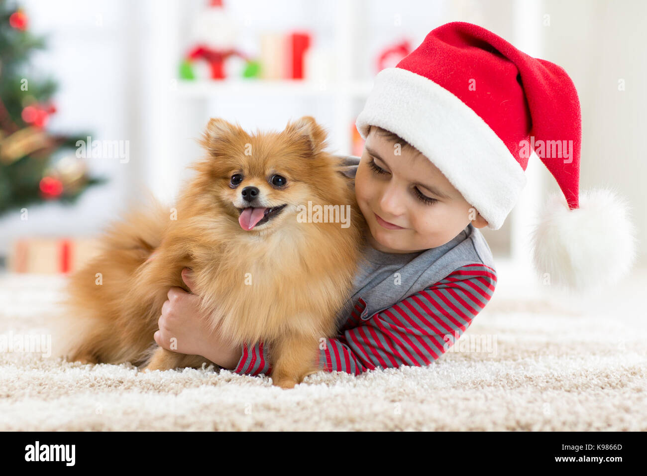 Little boy and dog at Christmas Stock Photo