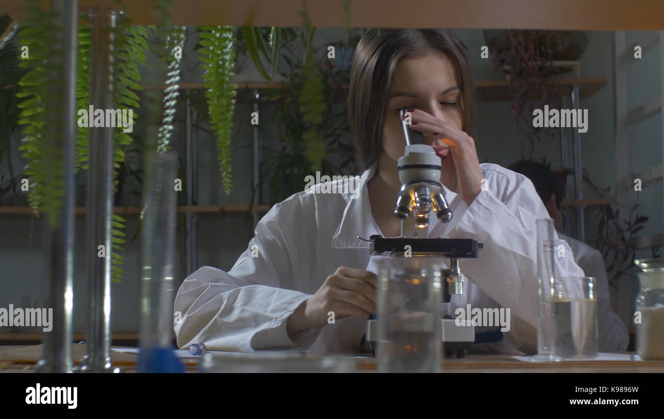 Young scientist looking through a microscope in a laboratory. Young scientist doing some research - Stock Image