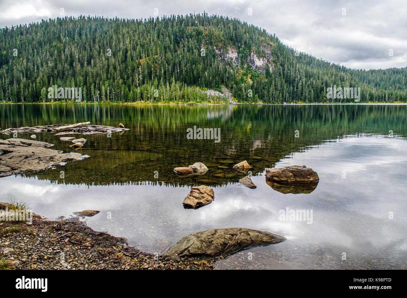 Reflections in Lake Helen MacKenzie, Strathcona, Canada - Stock Image