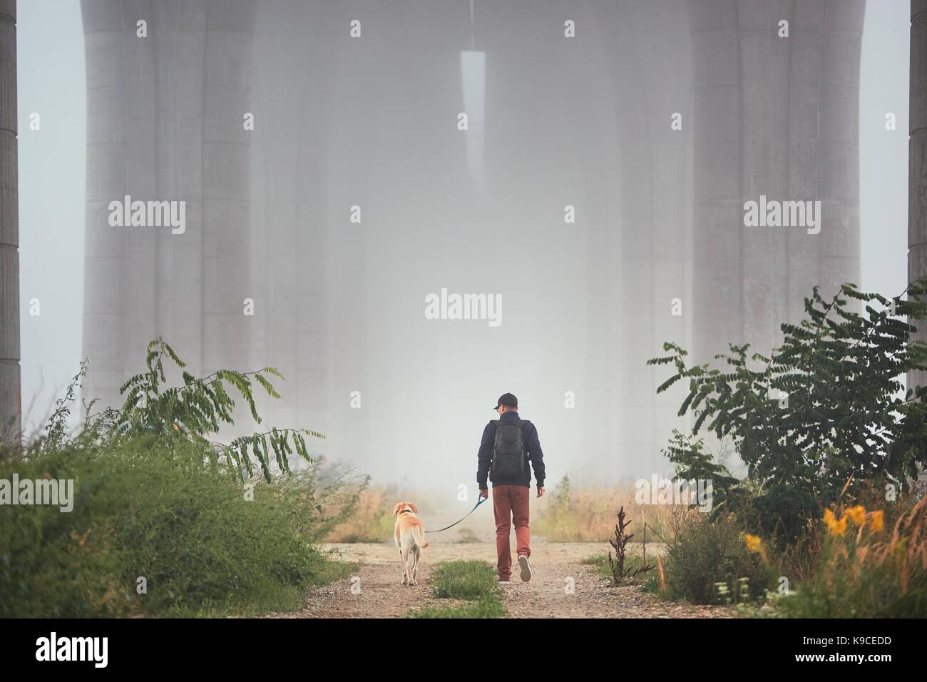 Man with dog under highway bridge in mysterious morning fog. Prague, Czech Republic - Stock Image
