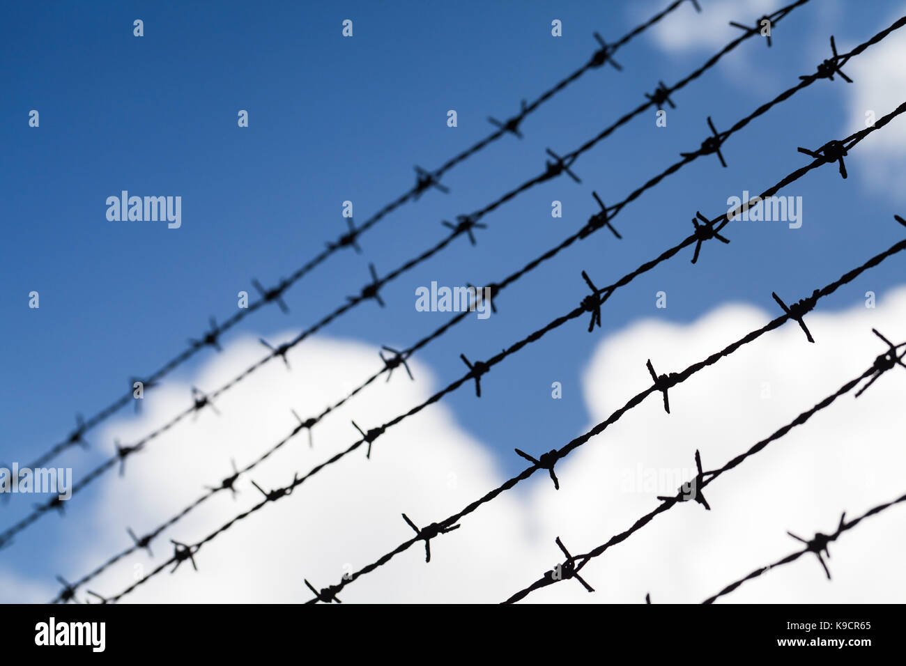 Black barbed wires over cloudy blue sky background, close up photo with selective focus - Stock Image