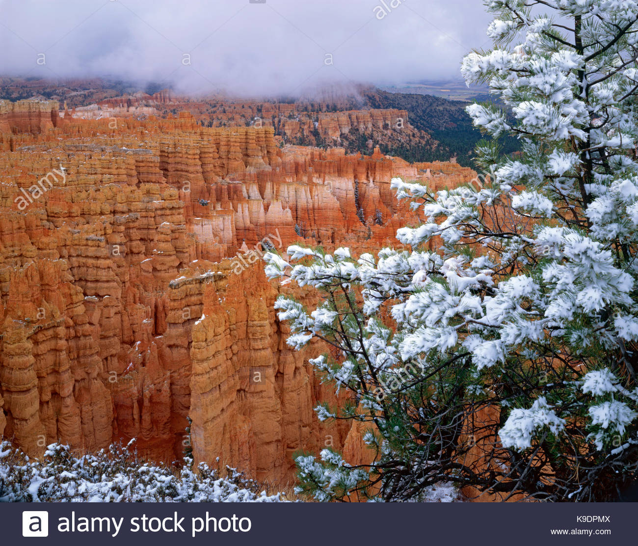 Storm over Silent City, Bryce Canyon National Park, Utah - Stock Image
