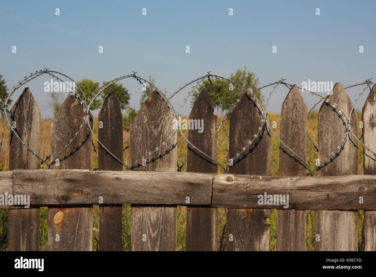 Old wooden fence with barbed wire photo - Stock Image