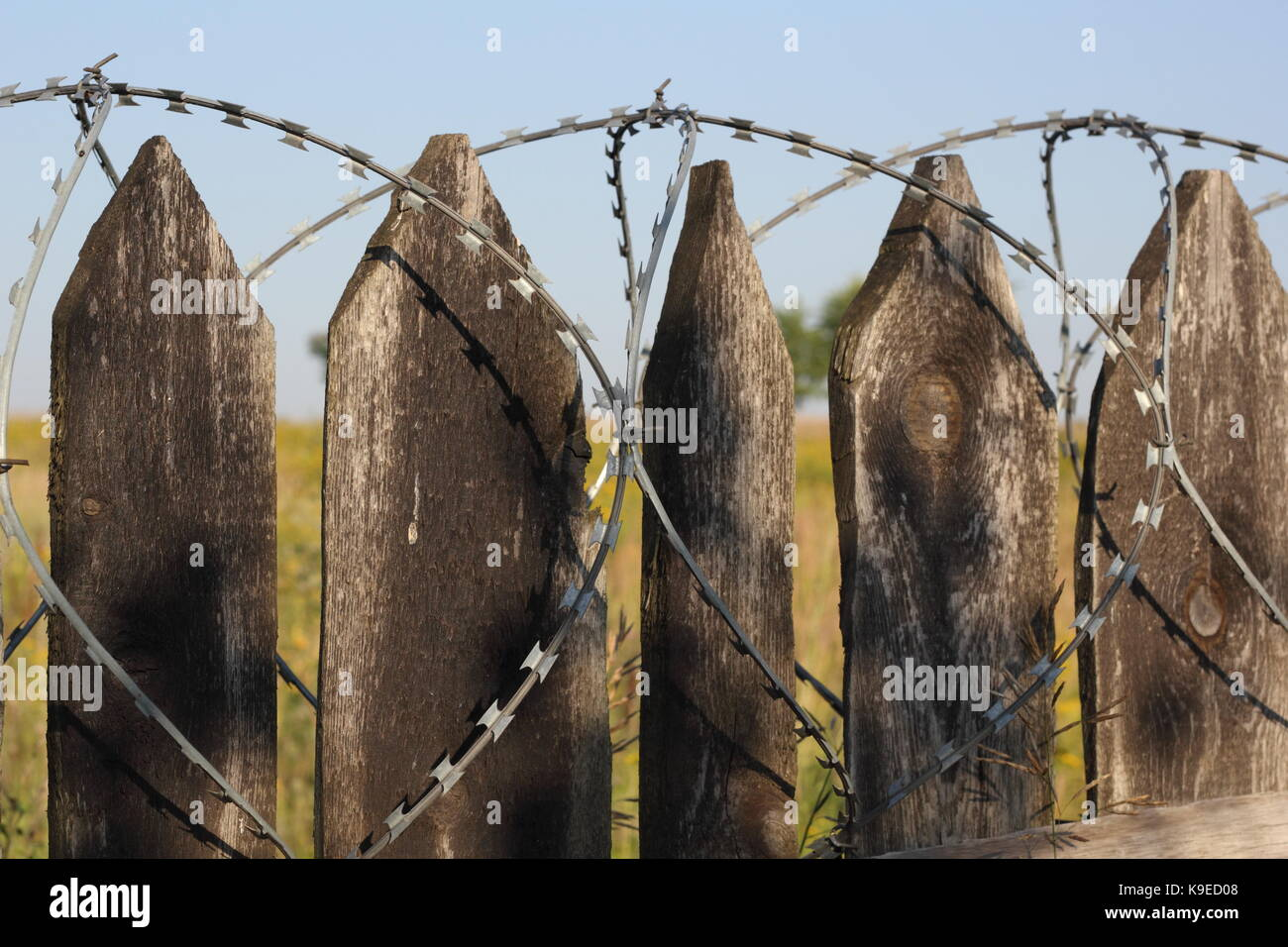 Old wooden fence with barbed wire closeup photo - Stock Image