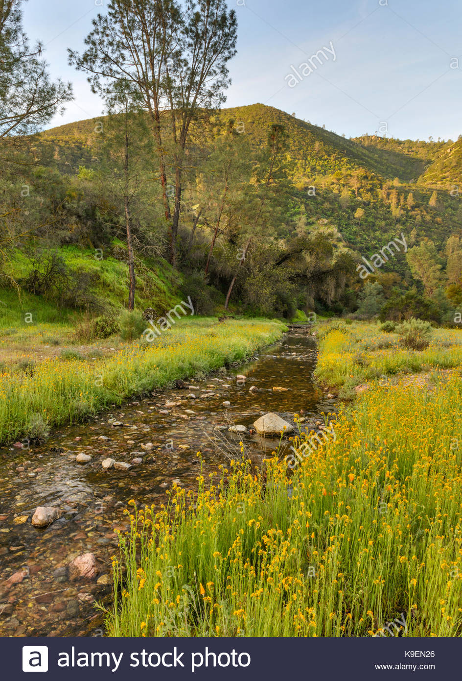Chalone Creek in Spring, Pinnacles National Park, California - Stock Image