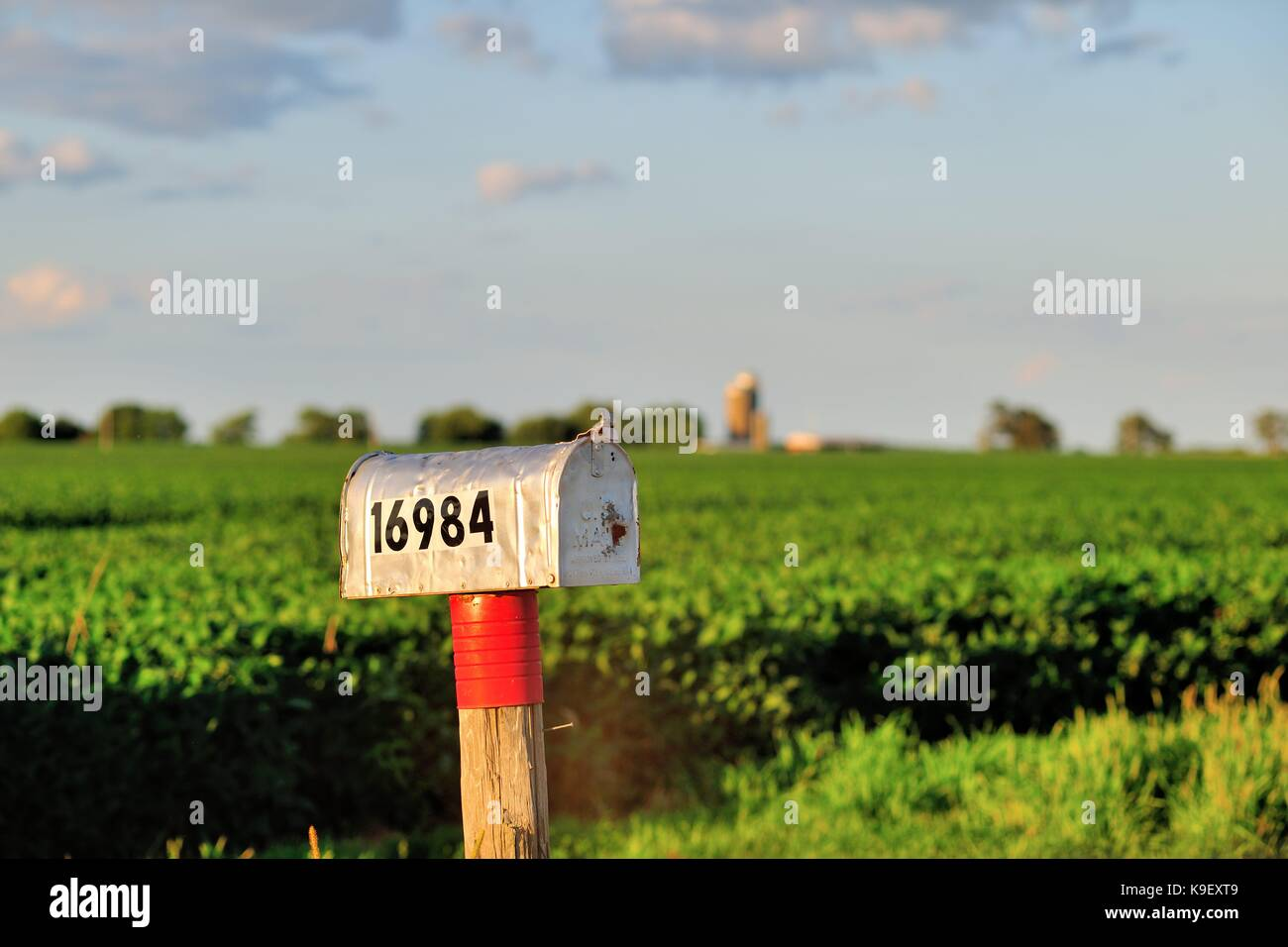 An isolated, lone mailbox along a rural dirt road in Illinois farm country, near Sandwich, Illinois, USA. - Stock Image