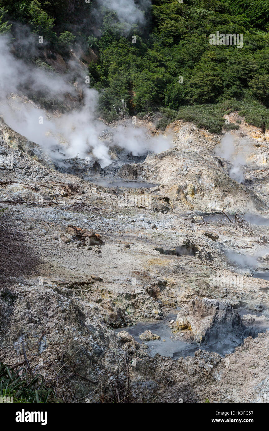 St. Lucia.  Steam Vents and Boiling Mud in the Soufriere Caldera. - Stock Image