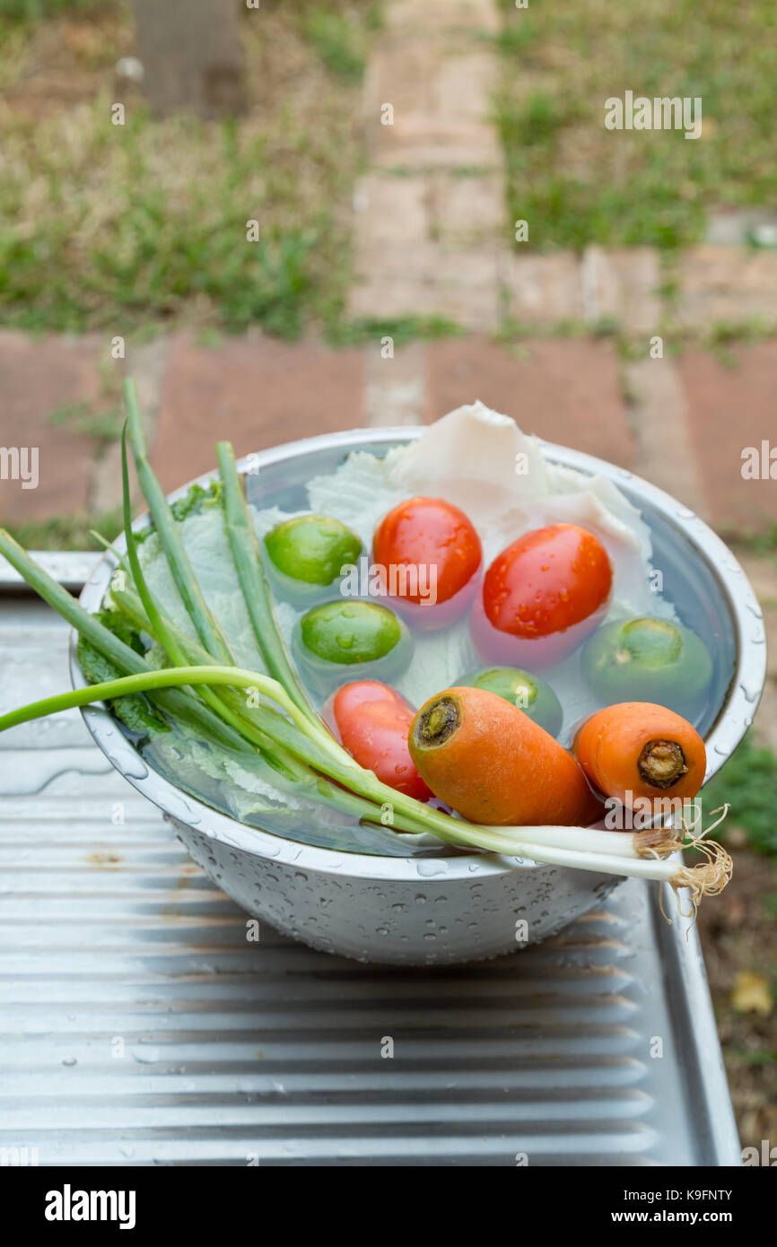 Vegetables (welsh onions, carrots, tomatoes, chinese cabbage) and fruit (lemons), mixed, fresh washed in metal bowl - Stock Image