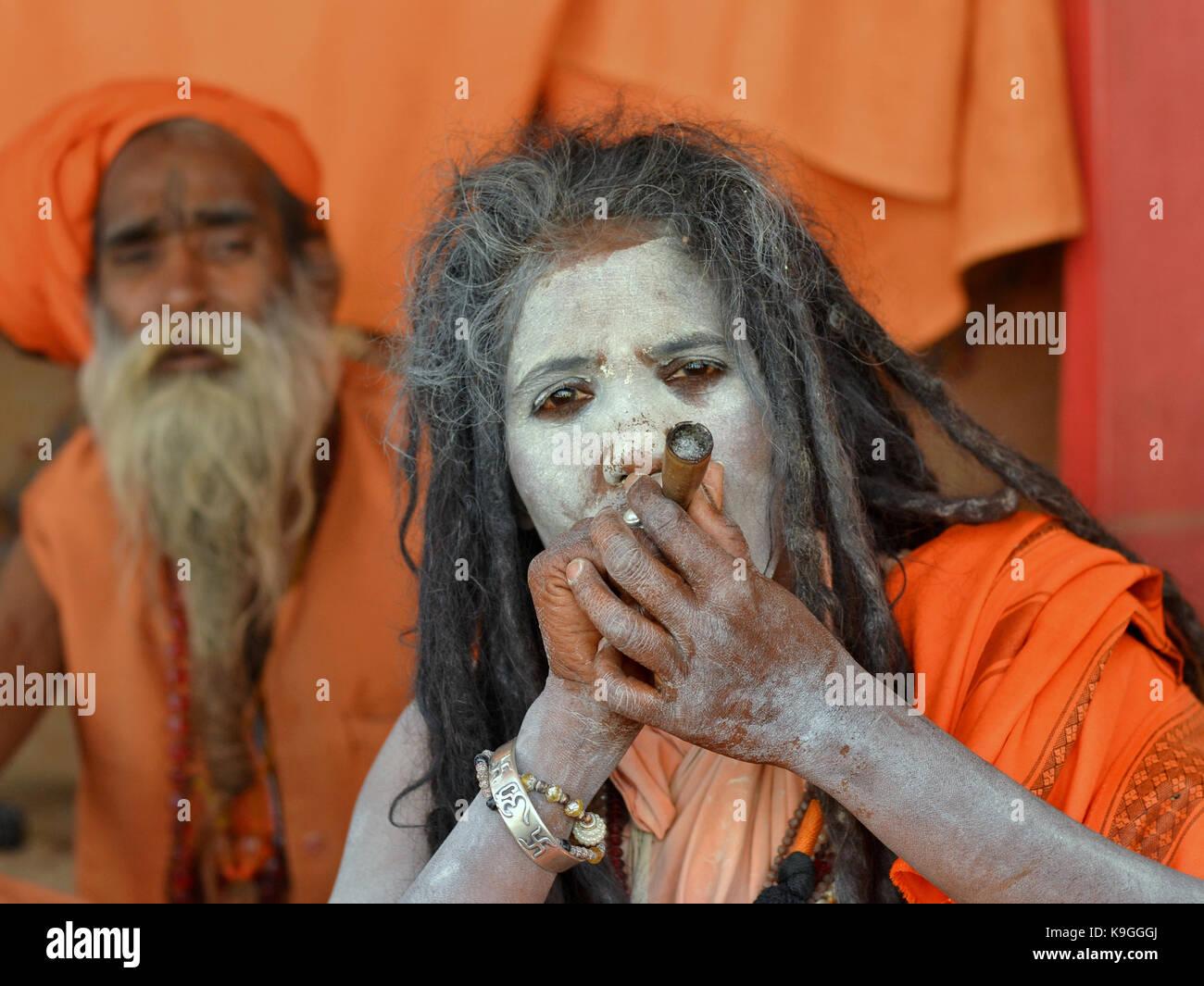 Middle-aged Indian Hindu holy woman (sadhvi, female sadhu) with dreadlocks and vibhuti (white sacred ash) on her - Stock Image